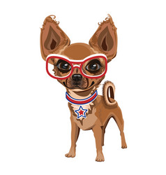 Little doggy in glasses vector