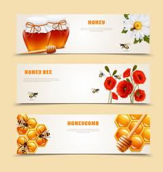 Three honey banner set vector