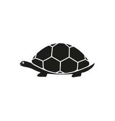 turtle of black icon vector image