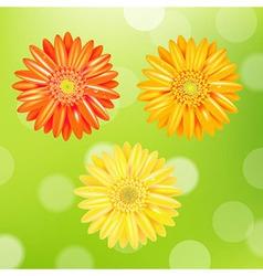 Color Gerber Set vector image