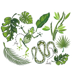Set of tropical leaves and reptiles vector image vector image