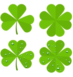 Set clover leaves isolated on white background vector image vector image