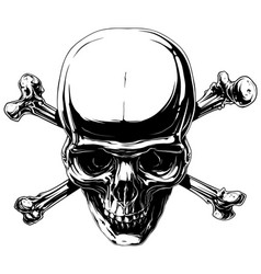 Graphic horror human skull with crossed bones vector