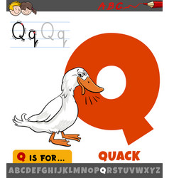 Letter q from alphabet with quack duck sound vector