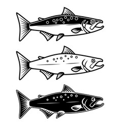 set of salmon icons on white background design vector image