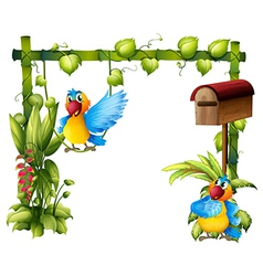 Two parrots with a wooden mailbox vector image vector image