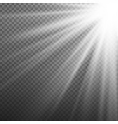 light effect rays burst light isolated on vector image vector image