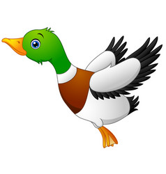 cartoon duck flying vector image
