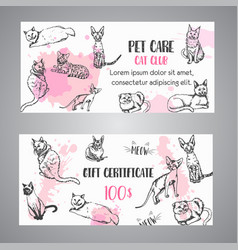 cat breeds gift voucher follow my feet text vector image