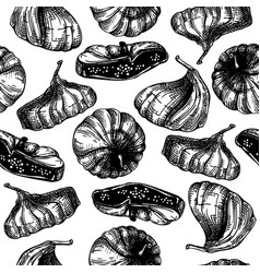 hand drawn dried fig fruits sketches seamless vector image