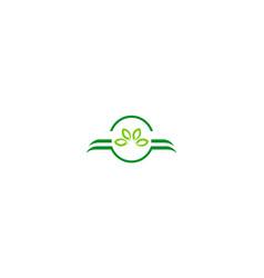 organic green leaf company logo vector image