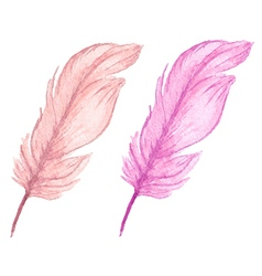Pink decorative watercolor feathers vector
