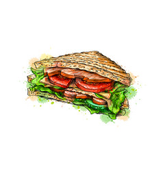 sandwich fast food from a splash watercolor vector image