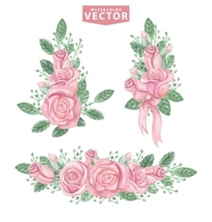 watercolor pink roses compositionscute vintage vector image