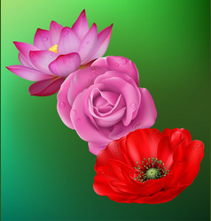 Realistic flower set vector