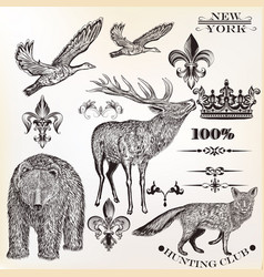 setof high detailed animals in engraved style vector image