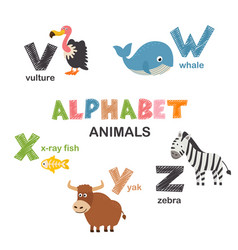 alphabet with animals v to z vector image
