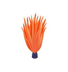 Orange weed aquarium composition vector