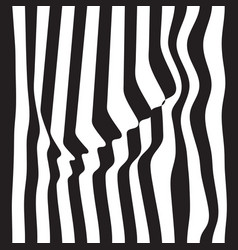 Striped abstract background black and white zebra vector
