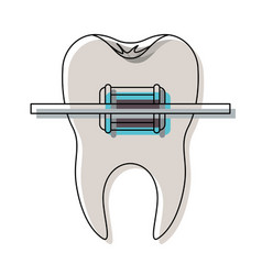 Tooth with root and brace in watercolor silhouette vector