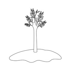 Tree in grassland with monochrome silhouette vector