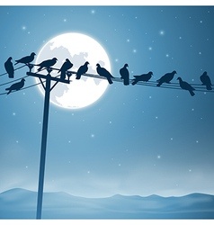 Birds on a Line vector image vector image