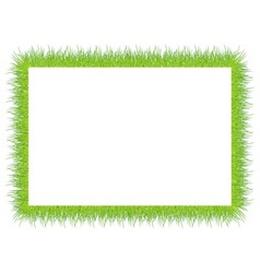 frame with green grass vector image vector image