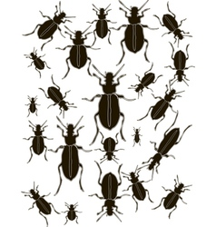 Set Bugs Silhouette vector image