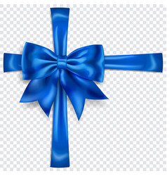 beautiful bow with crosswise ribbons vector image