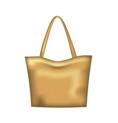 brown woman handbag vector image