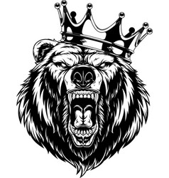 Ferocious bear in crown vector