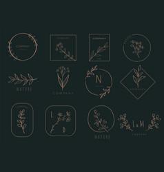 floral border and logo design templates hand drawn vector image