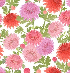 lovely seamless texture with chrysanthemum blossom vector image