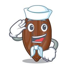 Sailor pecan nuts on a cartoon table vector
