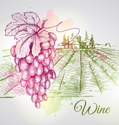 Hand drawn wine background vector image