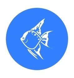 Angelfish common fish icon black Singe aquarium vector