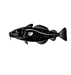 Atlantic cod gadus morhua or codling side woodcut vector
