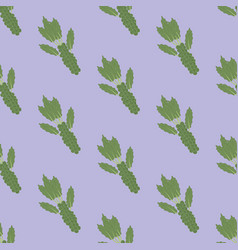 brussels sprouts vegetable pattern vector image