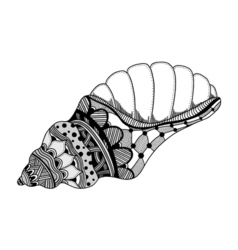 Hand Drawn sea shell vector image