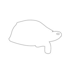 tortoise outline icon vector image