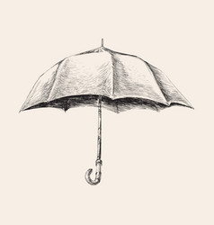 Umbrella hand drawn sketch vector