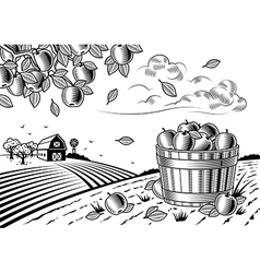 Apple harvest landscape black and white vector