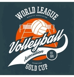 Ball for volleyball in front of field with net vector image vector image