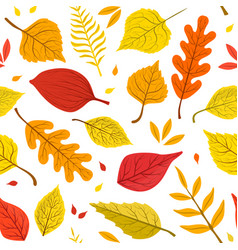 autumn leaves various forest trees natural vector image