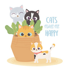 cats make me happy pets cats in wicker basket vector image