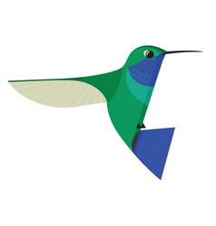 humming bird icon geometric flat isolated object vector image