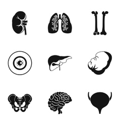 Internal organs icons set simple style vector image