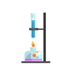 Spirit lamp with fire and glass test tube with vector