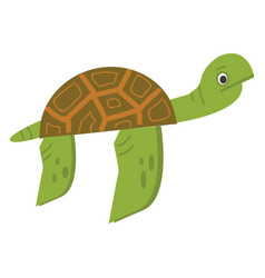 Turtle color vector