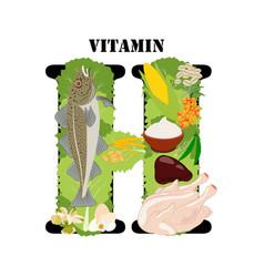 Vitamin h healthy nutrient rich food vector